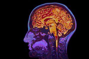 brain-synchrony-memory-neurosciencenews