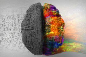 Right Side Left Side Hemisphere of Brain