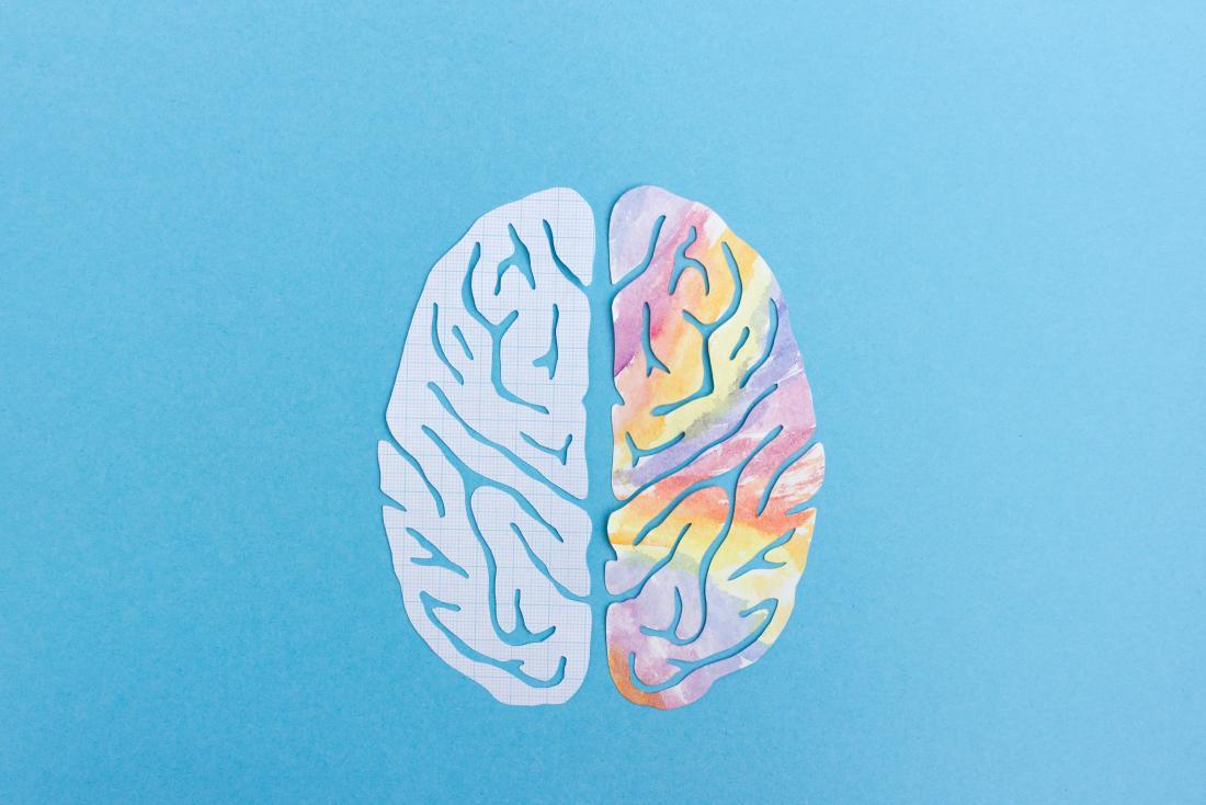 hemisferio_direito