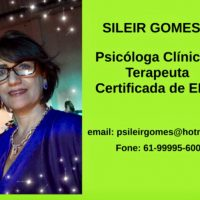 Sileir Gomes