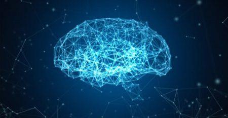 brain-digital-illustration