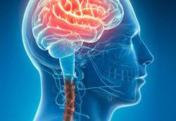 Brainspotting & Dissociação – 19 a 21 de fevereiro