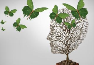 Integrando a Psicologia Positiva com o EMDR